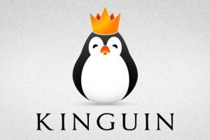 「Kinguin(キングィン)」で使用できる割引コード一覧【2018/7月】
